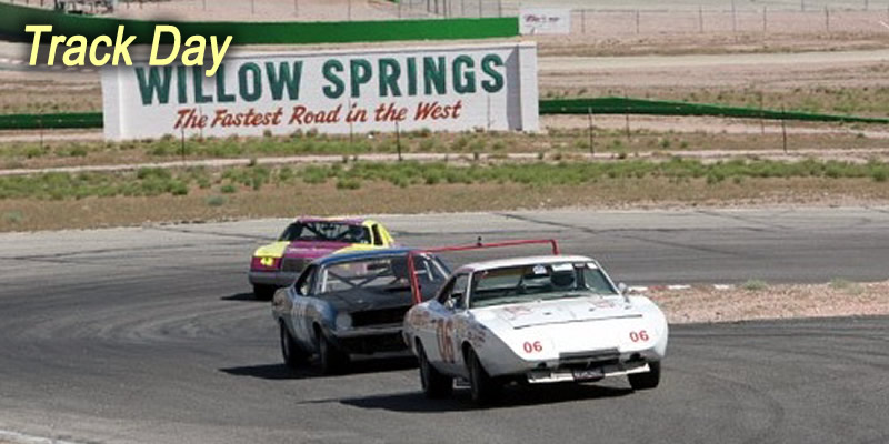 Willow Springs Track Day
